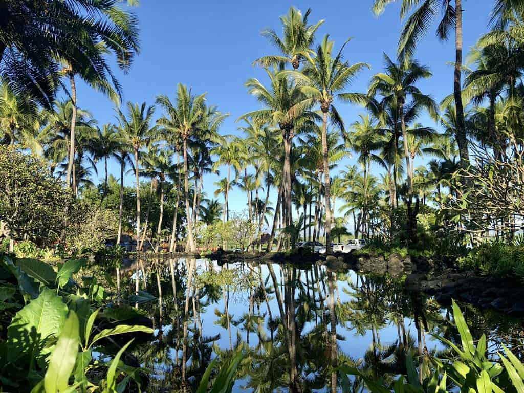 One&Only Le Saint Geran Mauritius Gardens