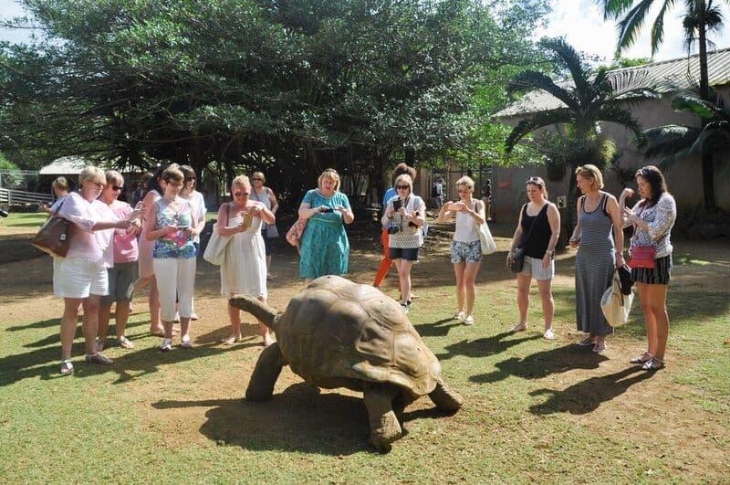 Mauritius Tortoise Sanctuary