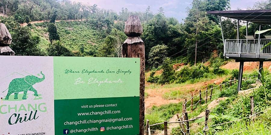 Chang Chill Elephant Sanctuary Intrepid Explore Northern Thailand