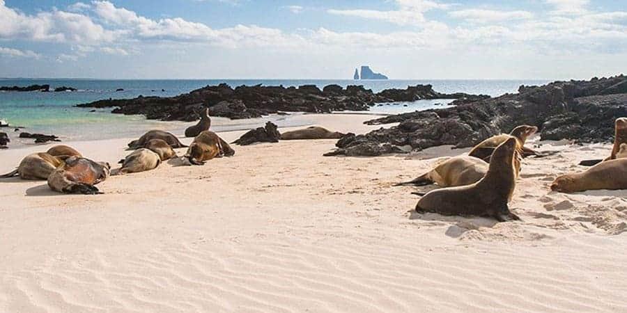 Galapagos-South-America