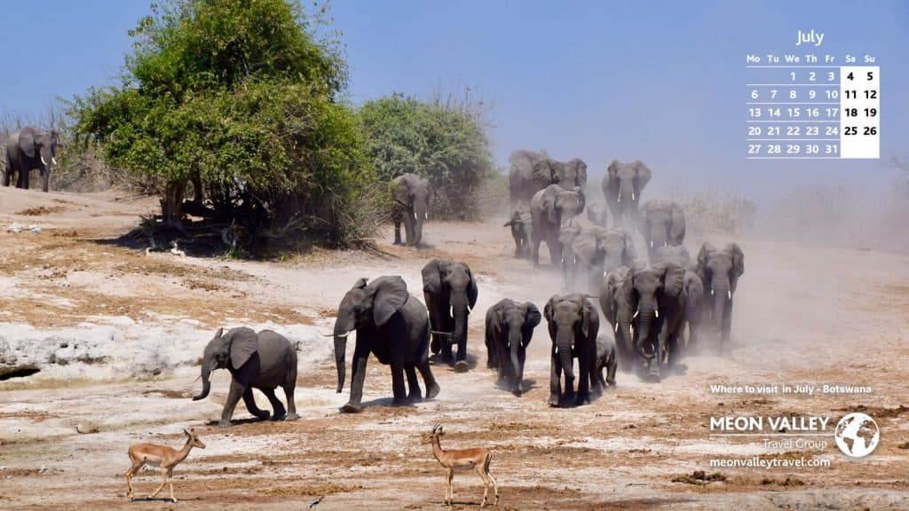 Where to Visit in July - Meon Valley Travel-Botswana