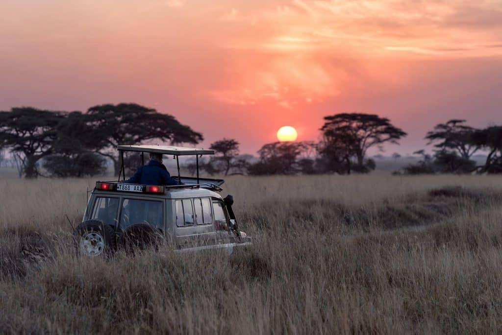 Honeymoon-Travel-agency-Safari