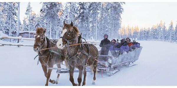 finland_saariselka_horse-sleigh