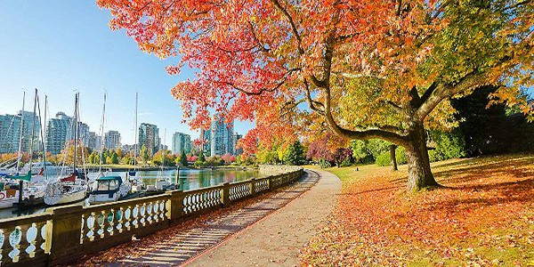 vancouver-british-columbia-stanley-park-urban-greenspace-fall