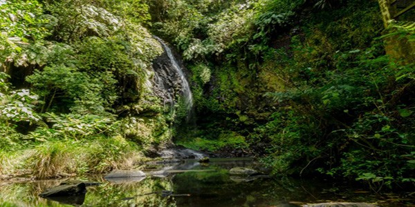 waterfall-in-amber-mountain-national-park