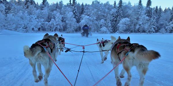 sled-3953650_960_720